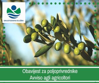 Obavijest maslinarima! / Avviso agli olivicoltori!